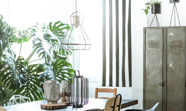 Improve The Indoor Air Quality Of Your Home With These House Plants